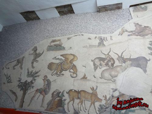 Музей мозаик